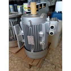 Motore elettrico marcato CHIARAVALLI Trifase HP 12,5 -B3-4 Poli (1400 g/min.) Tipo E2 (Alta efficienza)